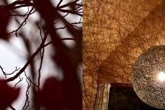 Licht-Schatten-Spiele aus der Natur