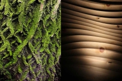 Strukturen aus der Natur wirken vertraut