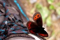 Der schönste Glücksmoment: Eins mit der Natur sein