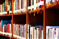 Bibliothek im Juffing