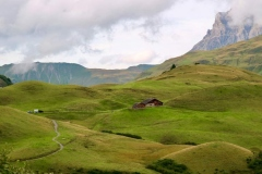Die sanften Hügel laden zu ausgedehnten Spaziergängen ein.