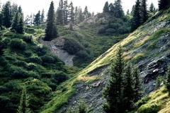 Wenn das Abendlicht den Kraftort und das Naturschutzgebiet namens Gipslöcher erstrahlt ...