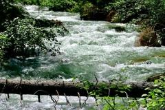 Bergfluss im Nationalpark Hohe Tauern