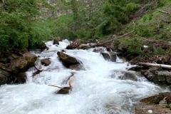 Bergfluss