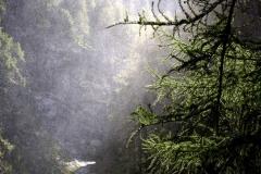 Nebel am Gößnitz-Wasserfall