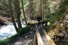 Wasserrinnen am Waldlehrpfad Natura Mystica