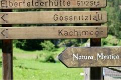 Walderlebnispfad-Wegweiser